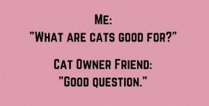 CatsWhataretheyGoodfor