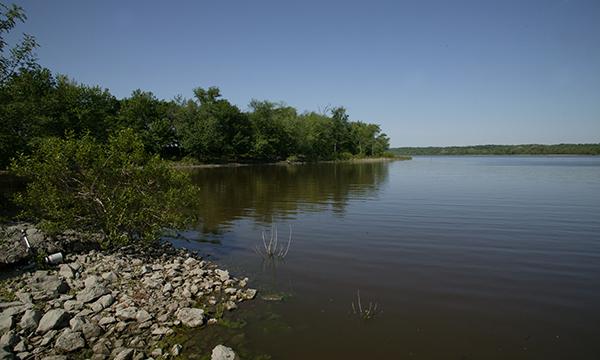 Rice Lake