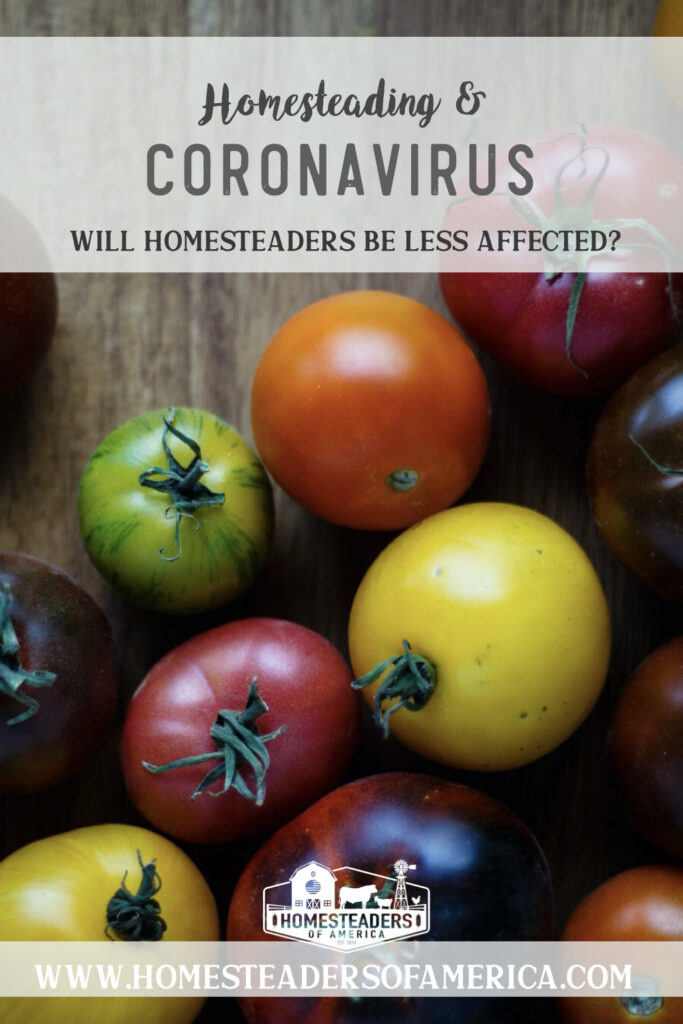 Homesteading & Coronavirus: Will Homesteaders Be Less Affected?