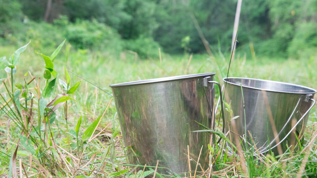 Stainless Steel Buckets for Milking a Family Cow