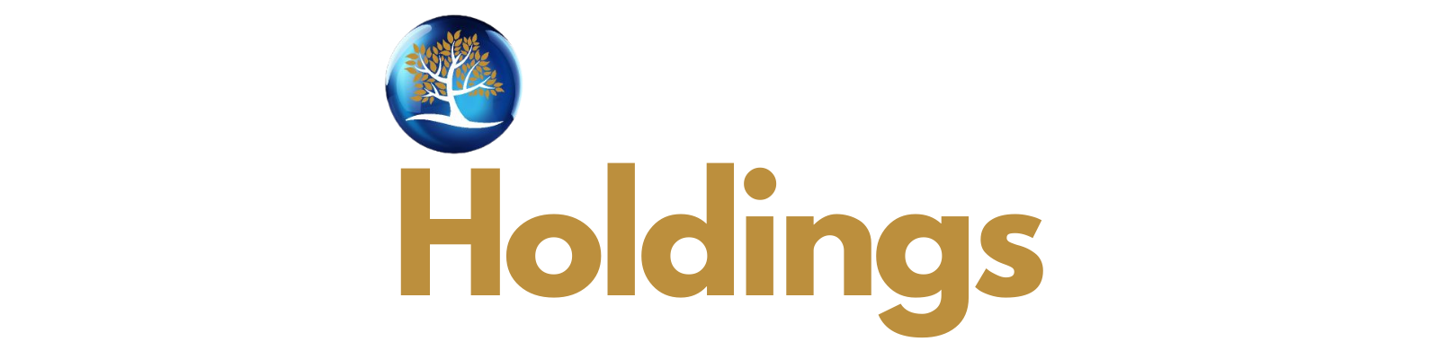Covenant Holdings