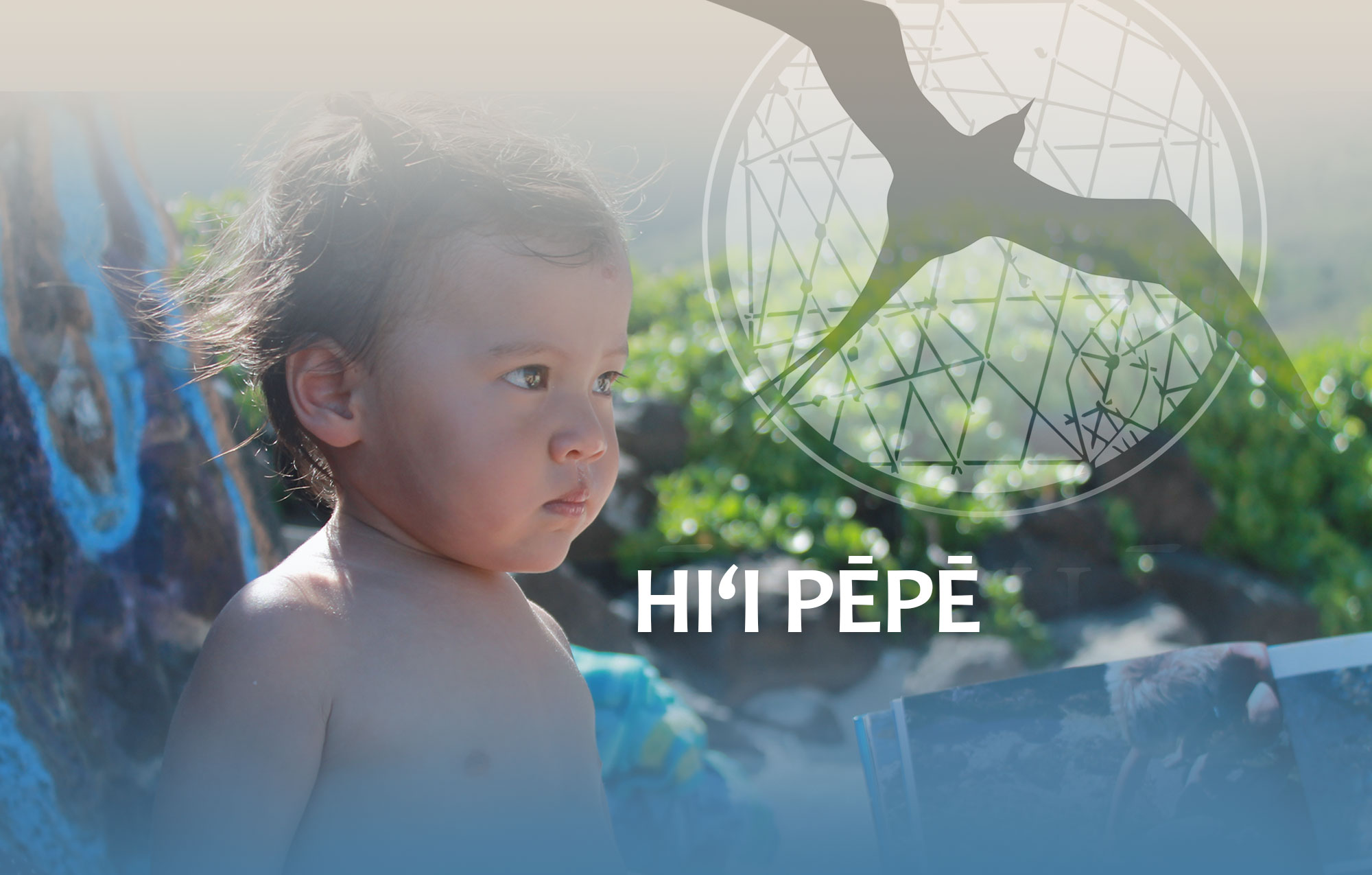 Hiʻi Pepe Program