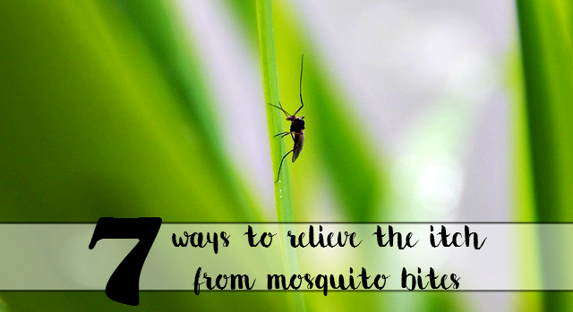 7 ways to relieve the itch from mosquit bites at home - sixtimemommy.com