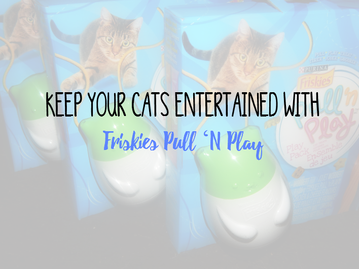 Keep Your Cats Entertained With Friskies Pull 'N Play #MostPlayfulCat