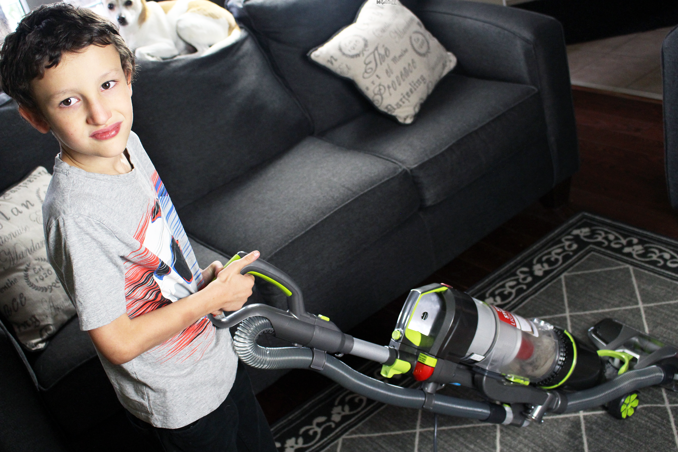 In a Pet Loving House: The Hoover Air Steerable Pet Does the Trick!