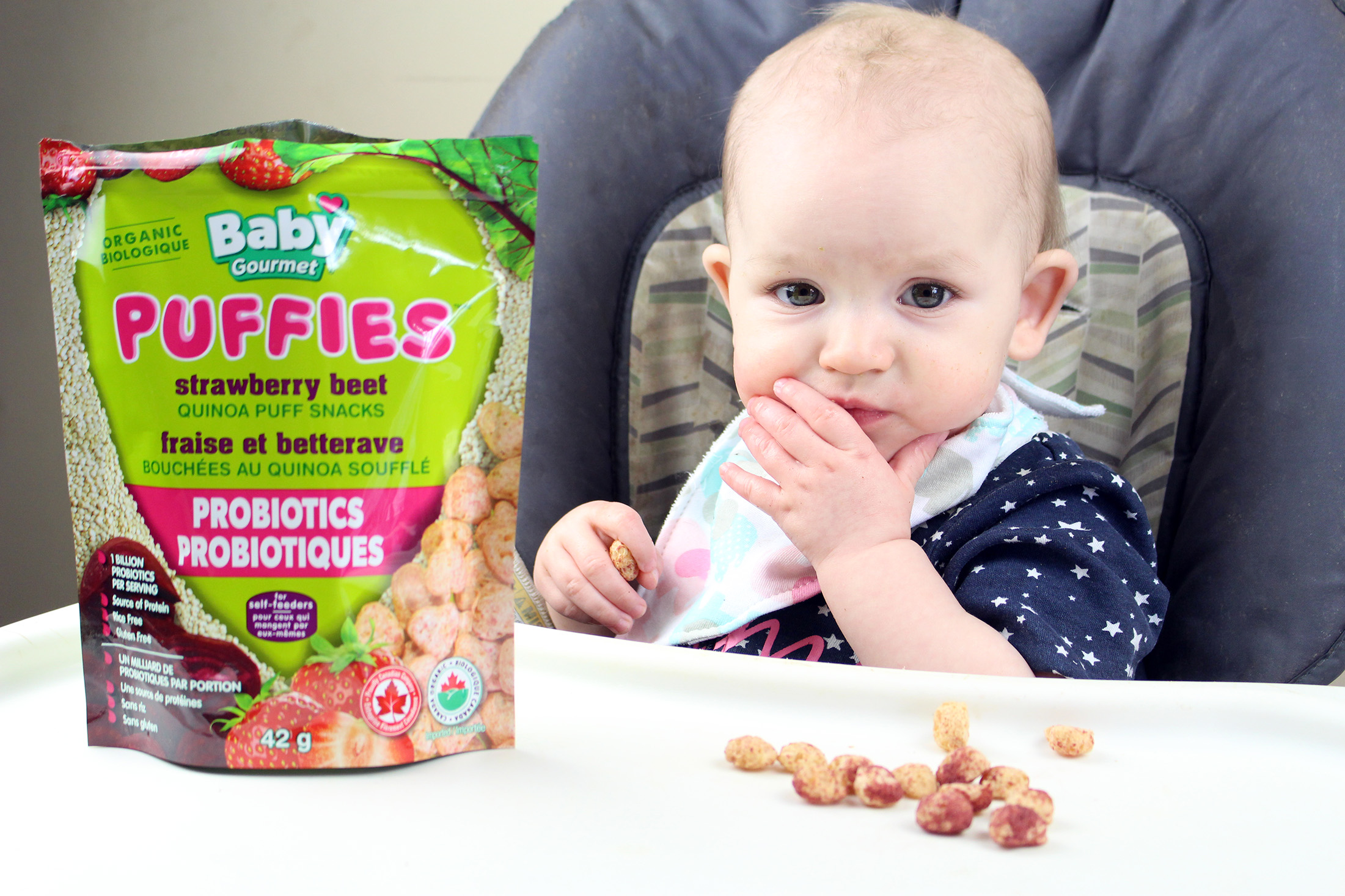 Baby Gourmet Organic Snacks for Little Ones
