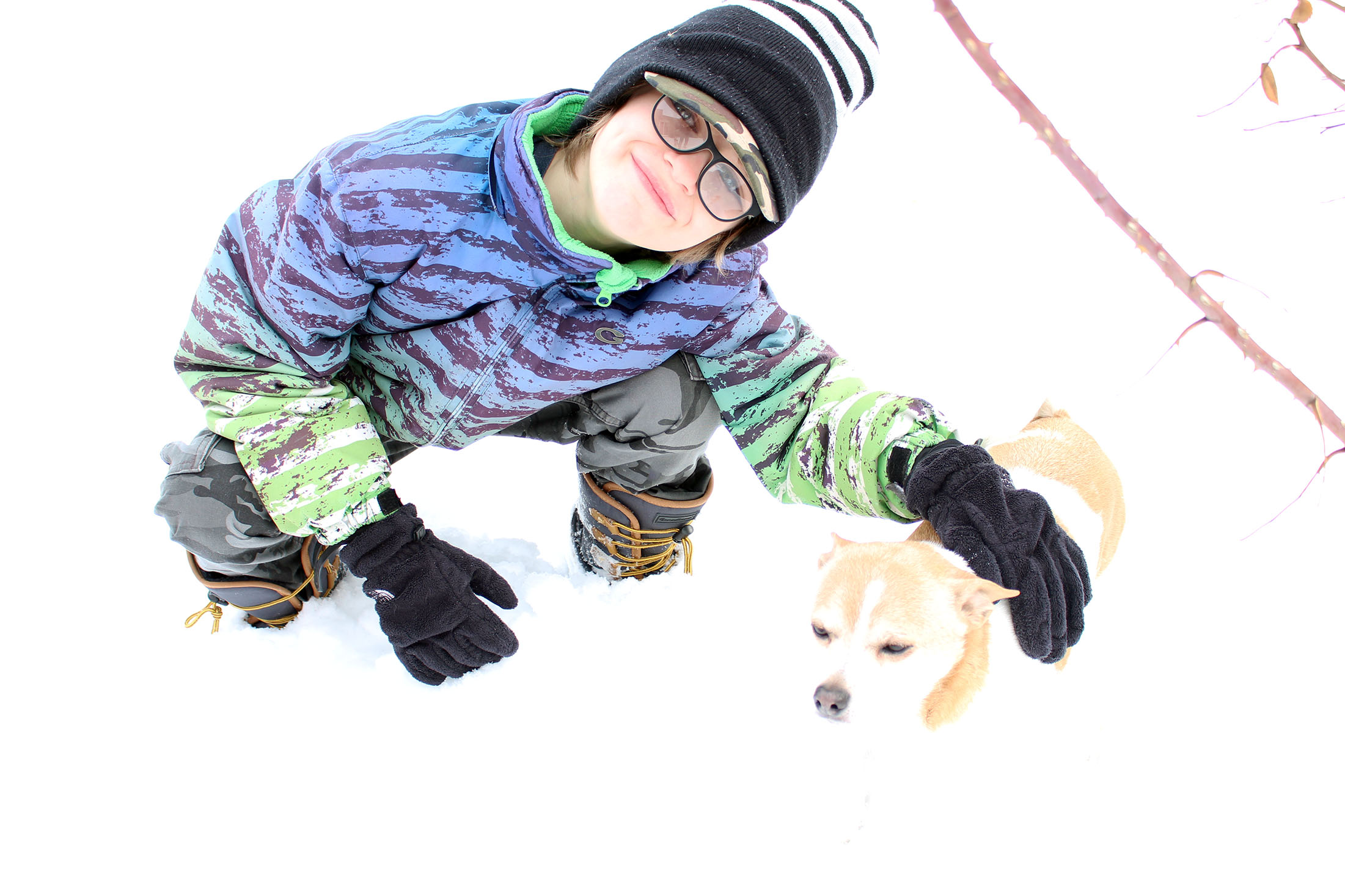 Tips for Having Dogs Outside in Extreme Cold Winter Temps
