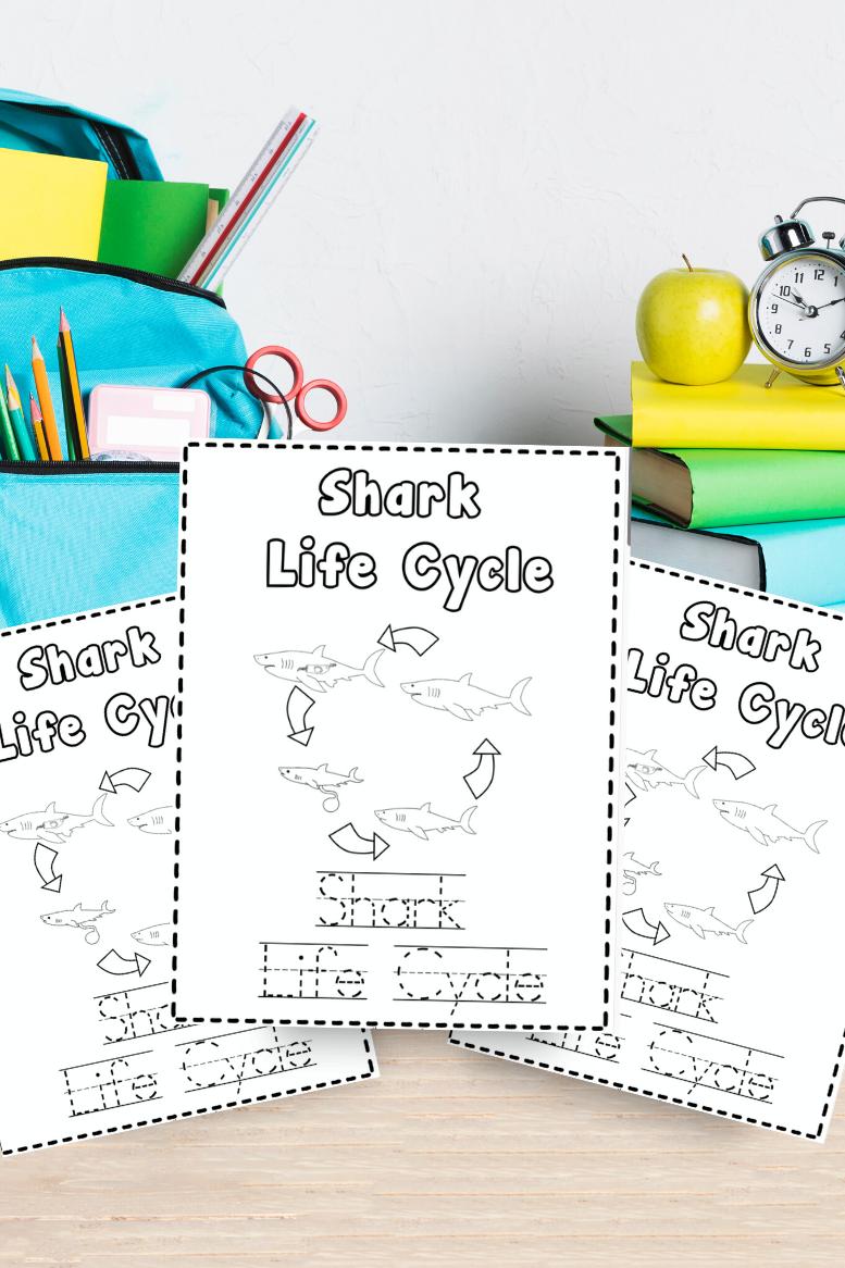 Shark Life Cycle Coloring & Writing Book