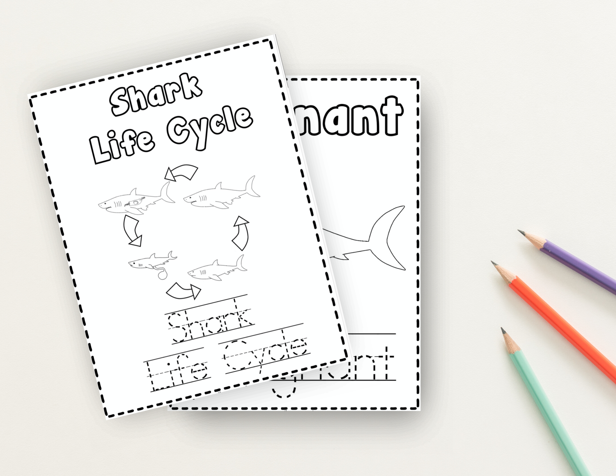 Shark Life Cycle Coloring & Writing Book