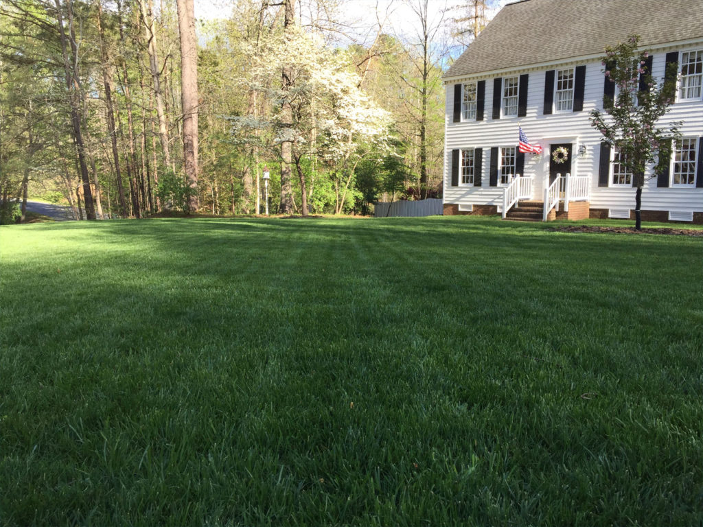 Turf Management Programs by Prestigious Turf Management of Yorktown VA