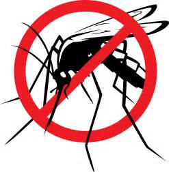 Mosquito Control by Prestigious Turf Management - Yorktown VA - Top Lawn Care Service in Virginia