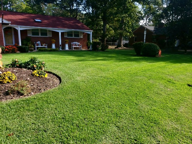 Prestigious Turf Management - Lawn Care Service - Before and After Pictures