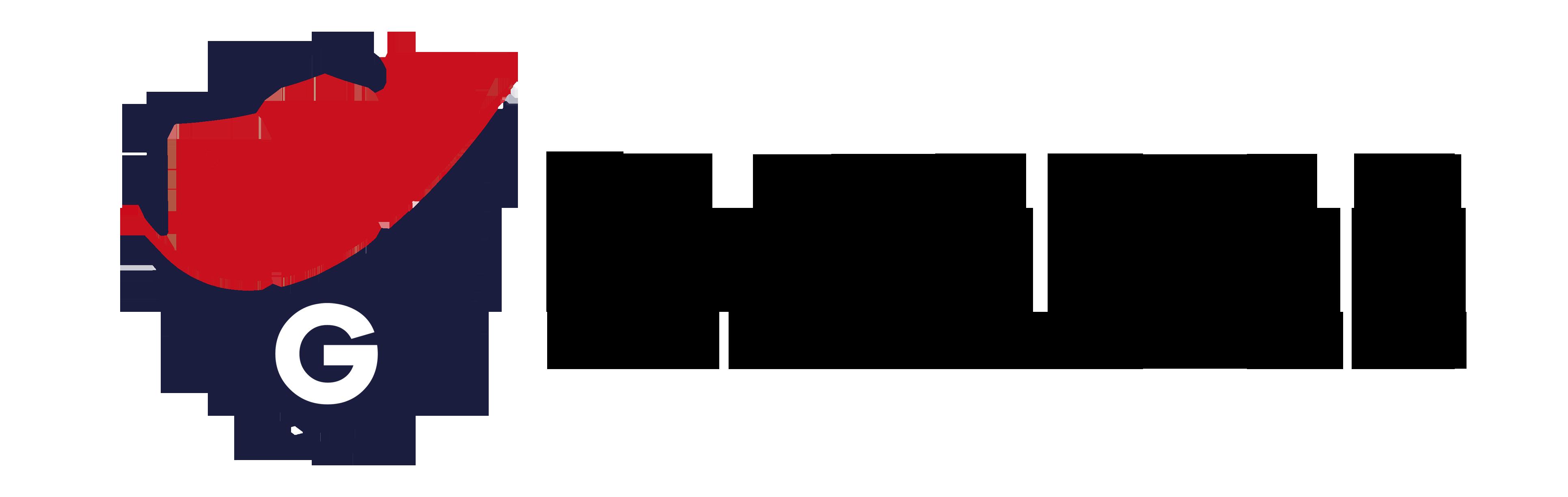 Guardian Business Network
