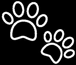paws-icon