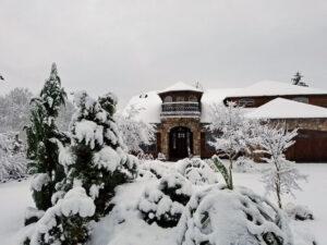 Rare snow of 2017