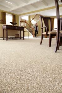 Carpet South Jersey
