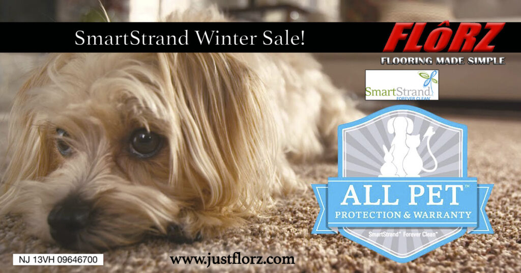Carpet South Jersey, Flooring Sale, Carpet and Hardwood