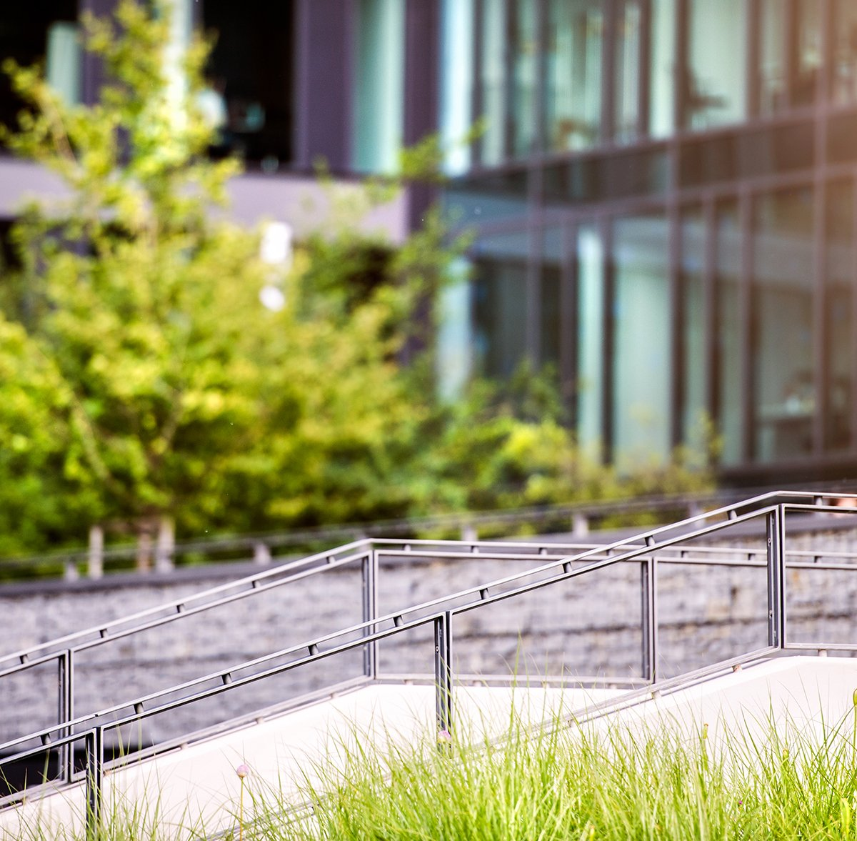 stairs-in-front-of-glass-buildings-business-office-PSGYAEW.jpg