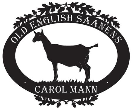 Old English Saanens