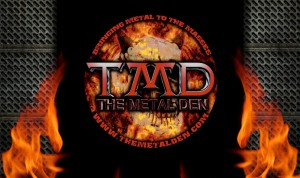 TMDflamer