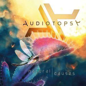 audiotopsycover