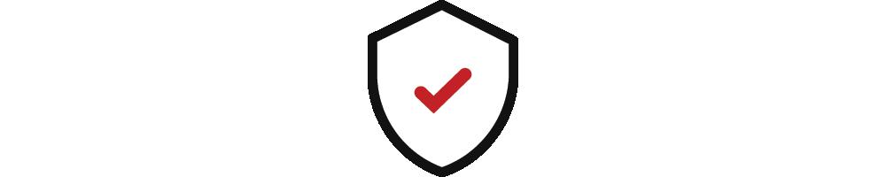 Website Security Express
