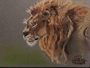 Lion: 9 x 12 Pastel