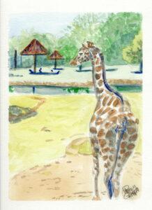 Giraffe: 9 x 12 Watercolor
