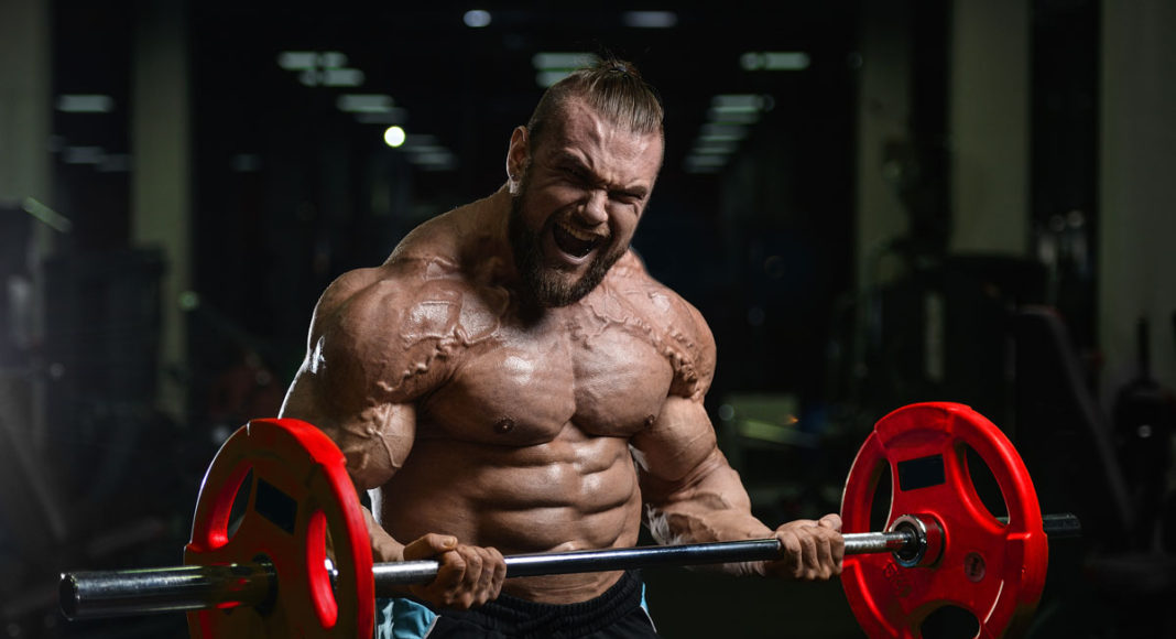 Muscle-Fiction-Muscle-Media