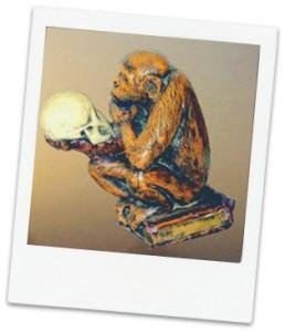 Monkey44 Web Design-photo
