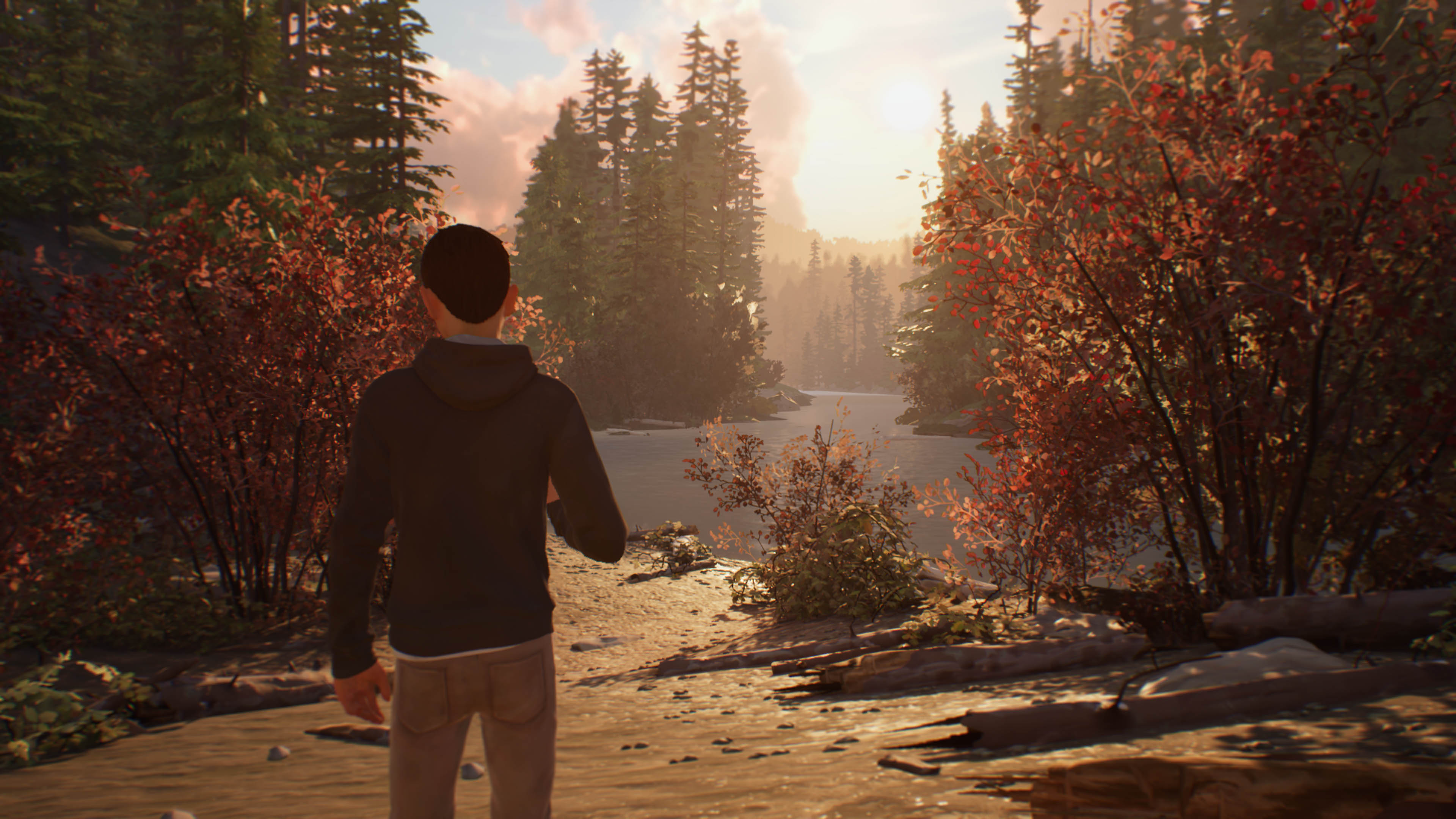 Life is Strange 2 - Episodio 1_paisajes