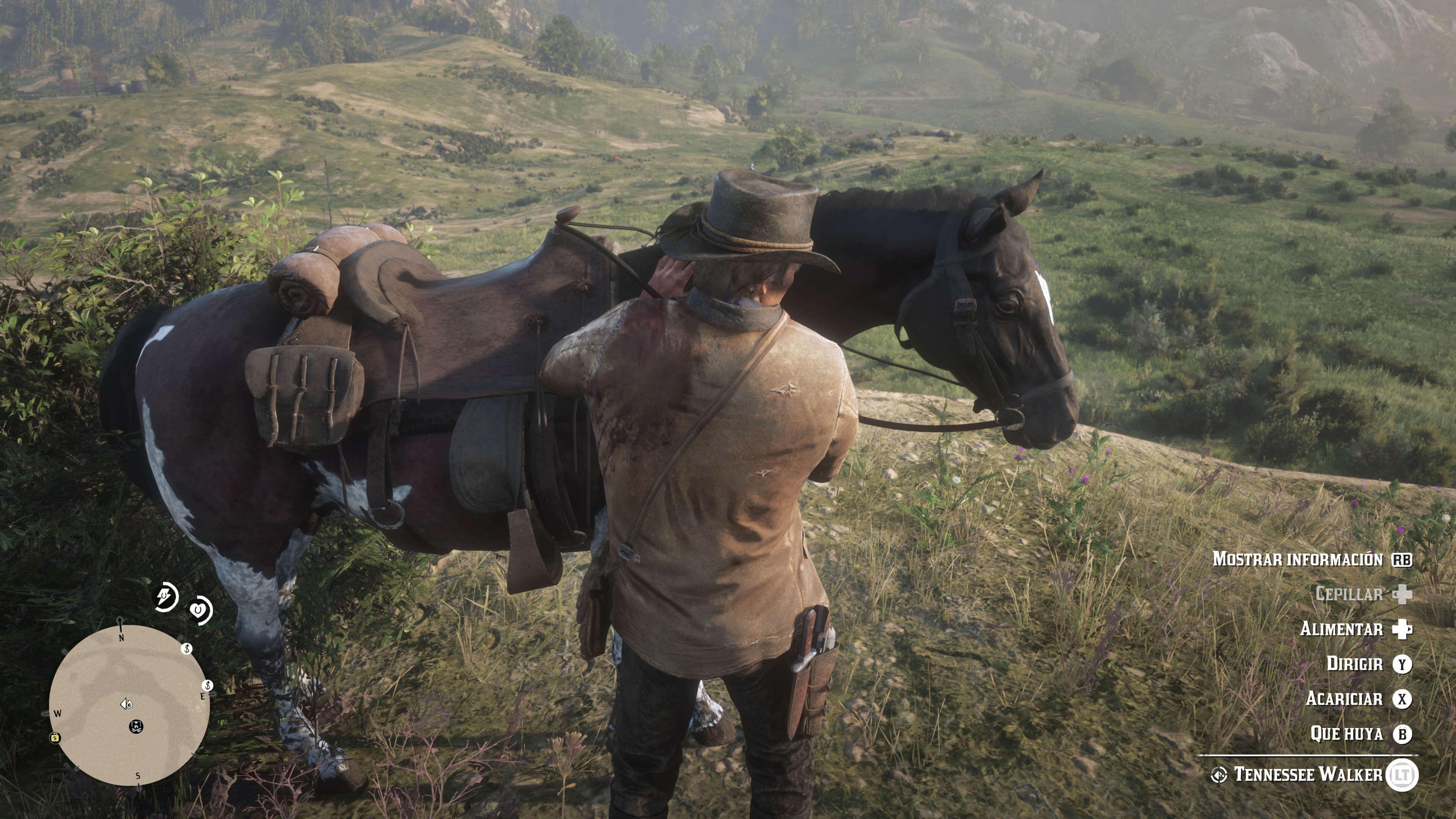 Red Dead Redemption 2_cuidado del caballo