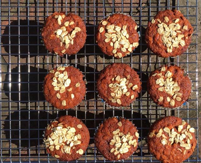 Honey Oatmeal Ricotta Muffins