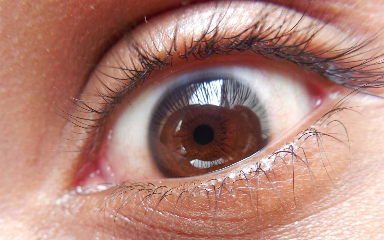 Human eye, microscope, micro photography