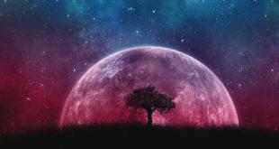 universe, fact, facts, space, space X, NASA, world, planet, Moon, Earth, Sun