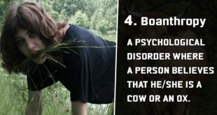 disorder, mental illness, life, people, psyshological