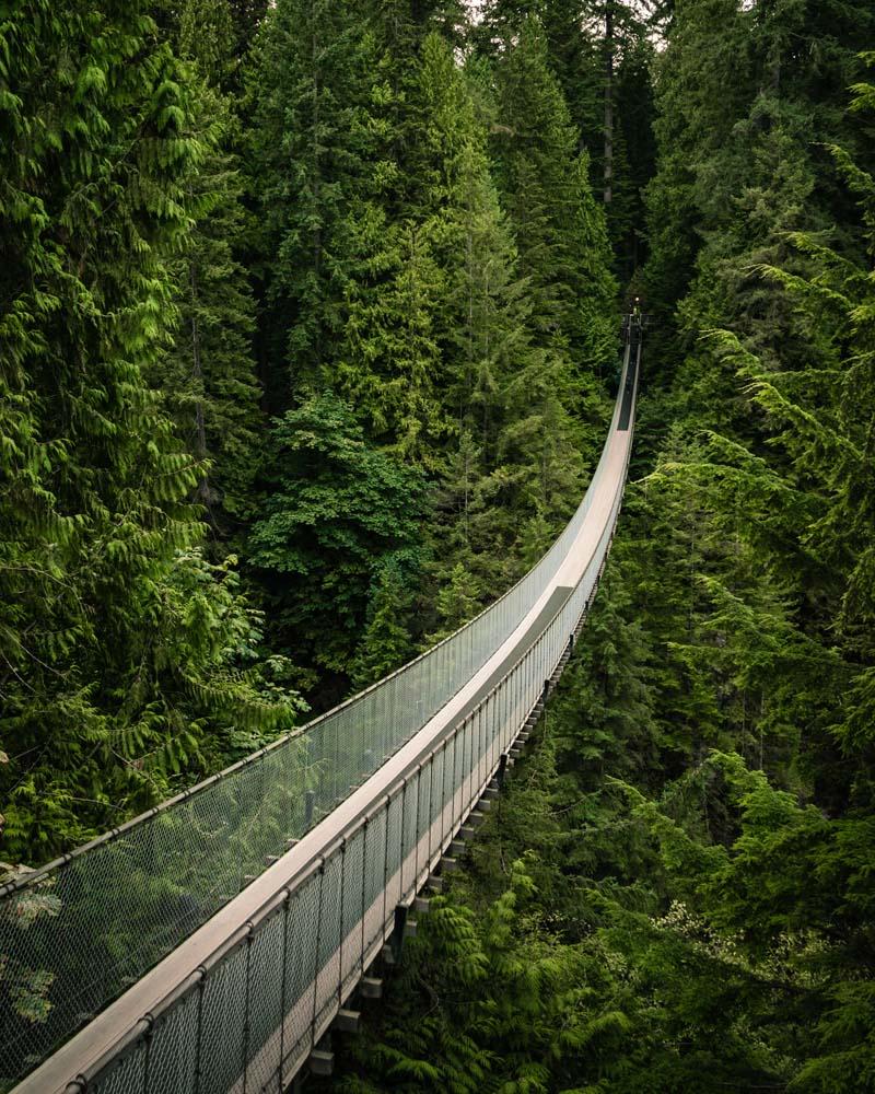 Capilano Bridge, Canada, travel, people, bridge, life,