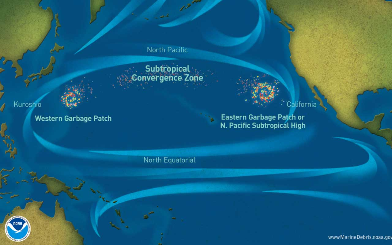 The North Pacific Garbage Patch