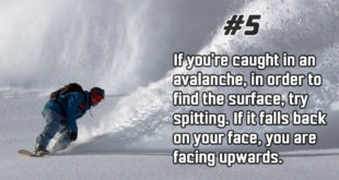 facts, life, people, nature, avalanche