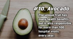 avocado, studies, fact, facts, people, life, science, entertainment