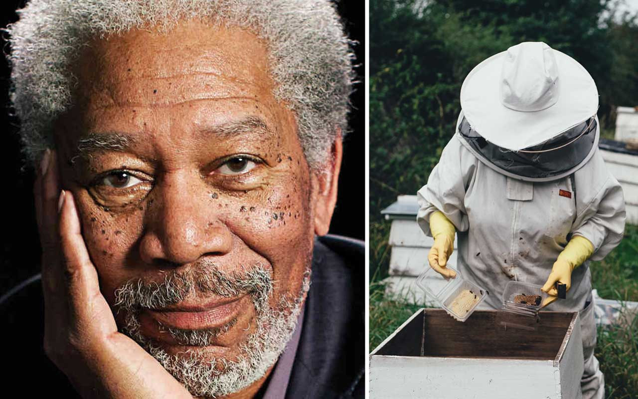 Morgan Freeman, life, celeb, facts