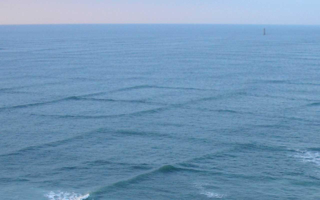 ocean, cross sea, life, nature, facts