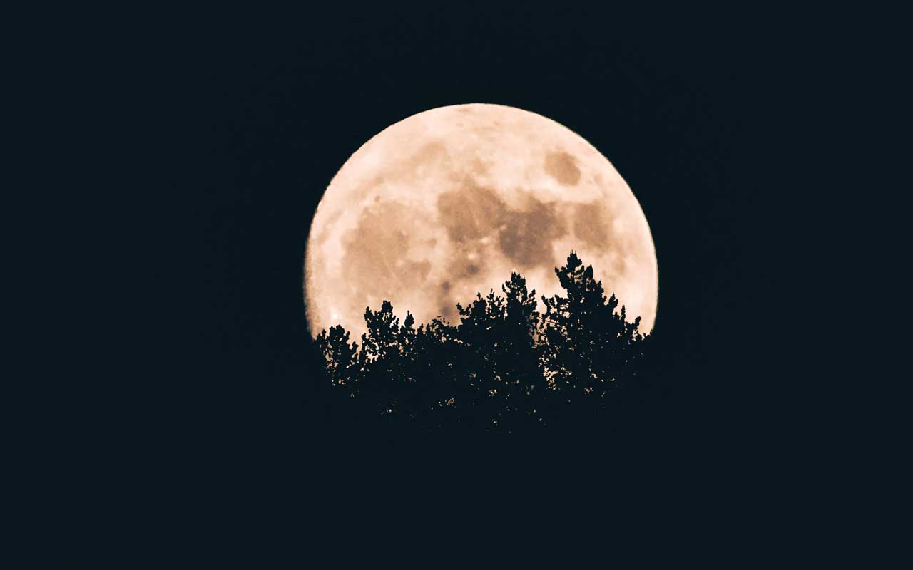 full moon, life, facts, planet