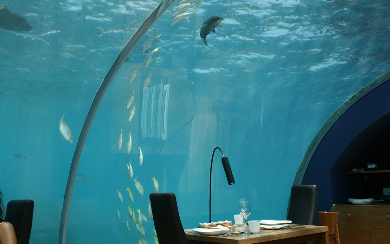 underwater, Maldives, restaurant, hotel, facts
