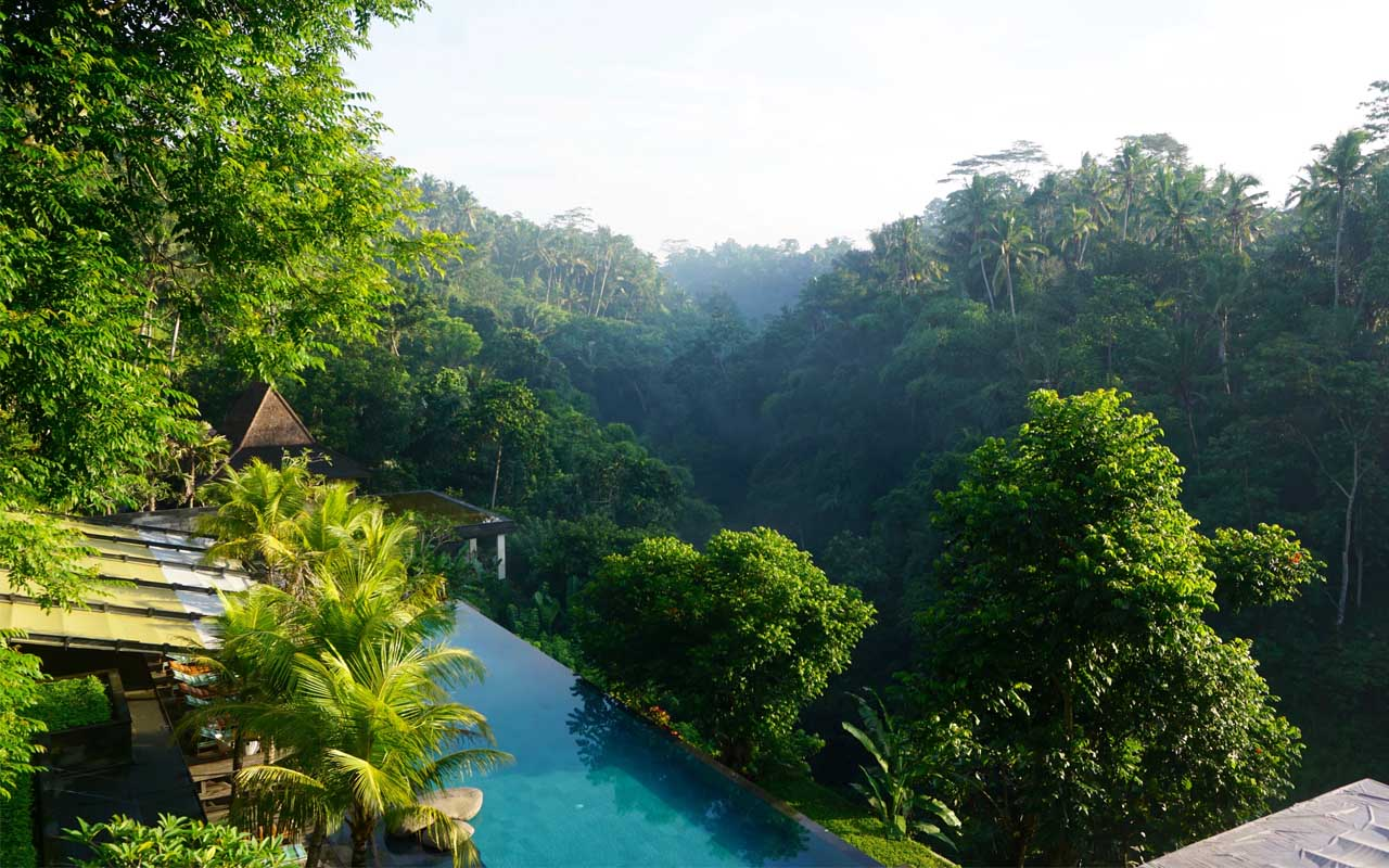 Hanging Gardens, Bali, Indonesia, facts, life, travel