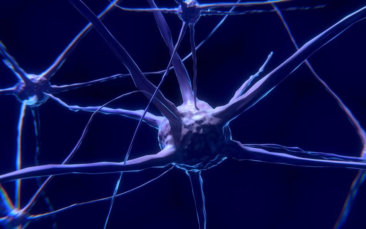 neuron, brain, activity, facts, music, benefits