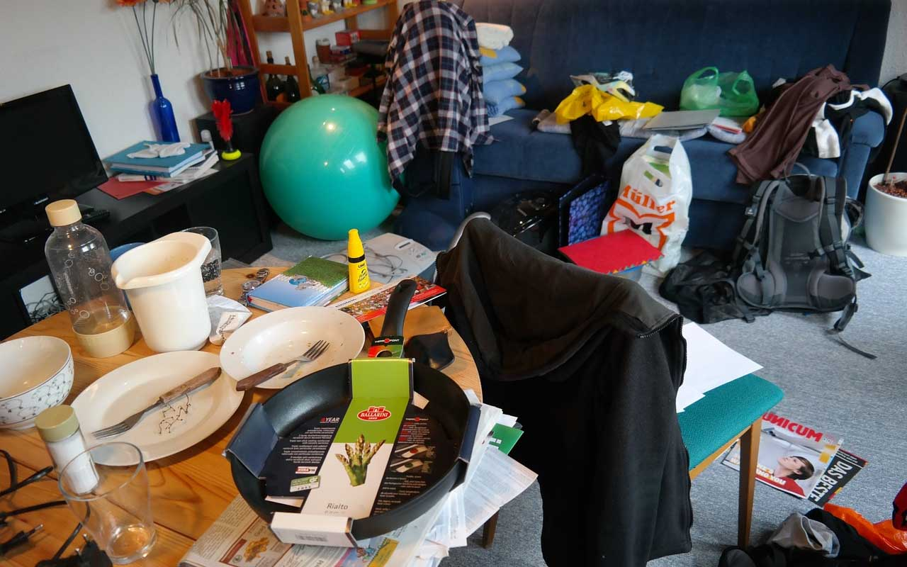 clutter, room, house, facts, stress, people