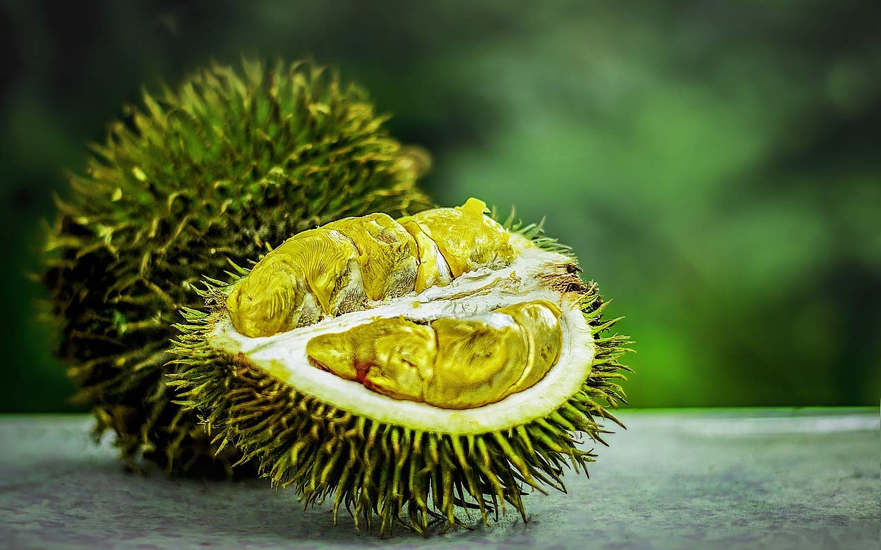 Durian, food, fruits, Indonesia, exotic, life, travel