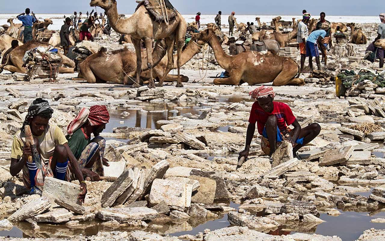 Salt mining, Ethiopia, work, jobs, people, life