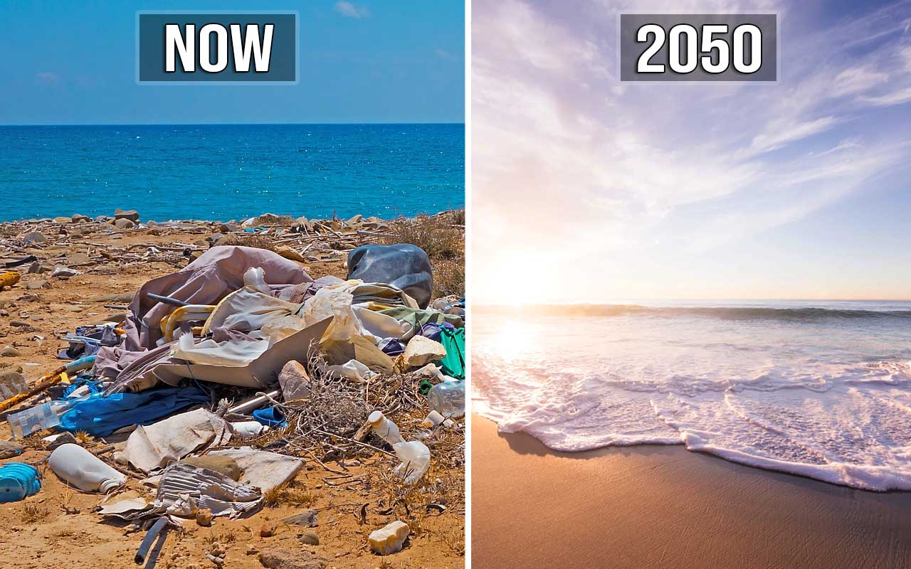 plastic, beach, pollution, facts, life, nature, worms